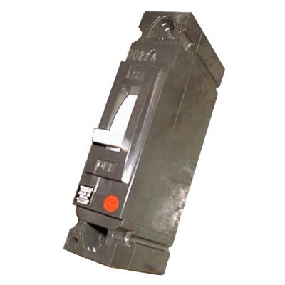 TEB122100 - 100 Amp 240 Volt 2 Pole CB (10KAIC) - New Surplus